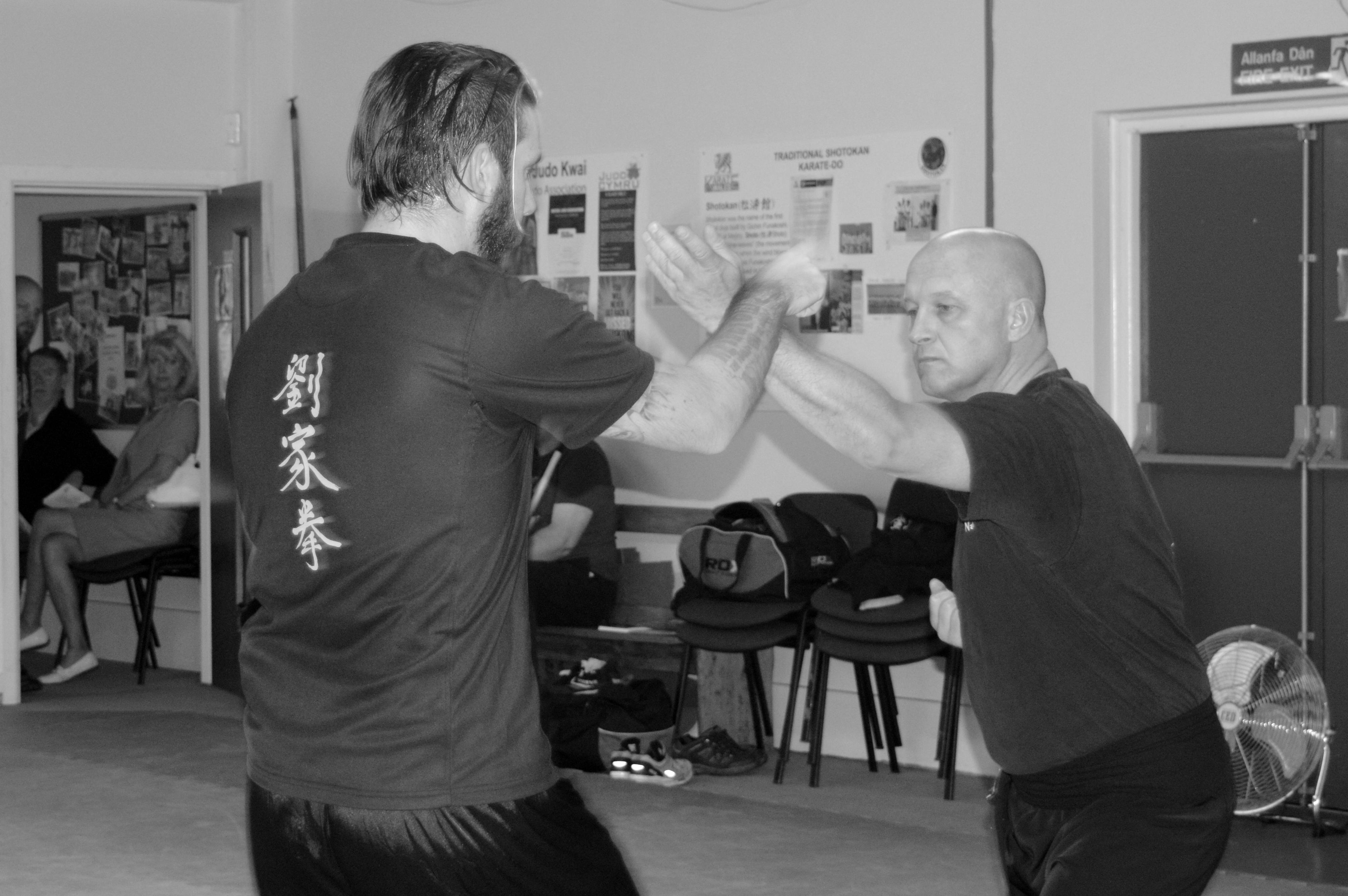 Kung Fu Lau Gar